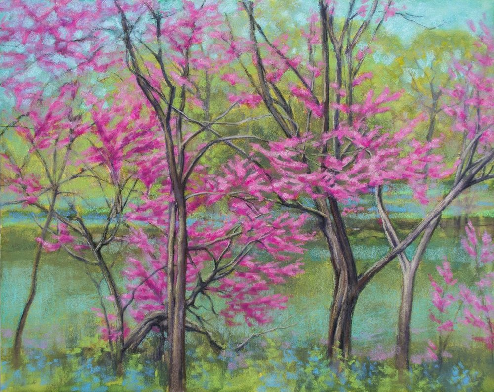 "Redbuds at the Lake - Soft Pastels on museum-quality wooden board, 16"" x 20"" / 40.5 cm 51 cm. Native to North America, these trees burst into blossom in early spring. In this artwork, hot-pink blossoms contrast vividly against the backdrop of fresh green foliage and turquoise water. Dark tree trunks and branches make a startlingly bold contrast with the softness of the blooms, foliage and water."