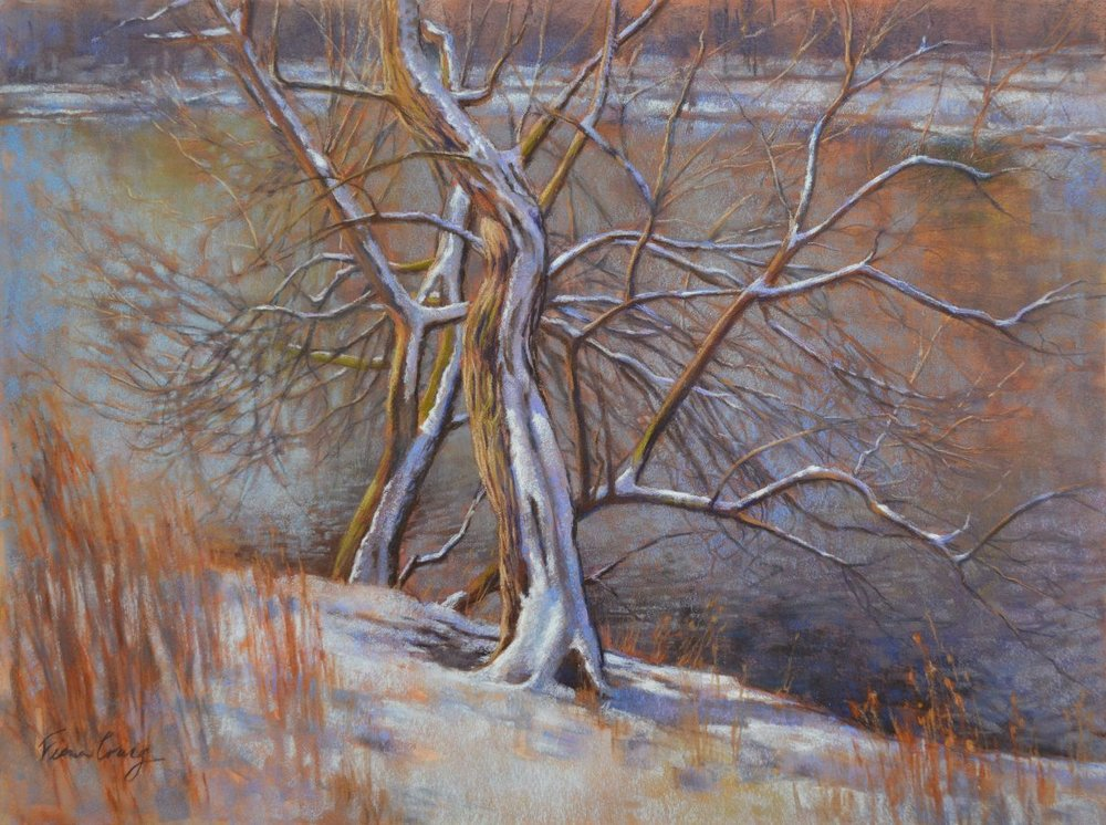 "Spring Snowfall, 1 - Mixed media (watercolour and soft pastel) on wood panel, 24"" x 18"" x 1/8"". Requires framing under glass. The subtle beauty of bare, winter trees aby a lake is enhanced by a fresh snowfall that frosts the trunks and branches. The trees appear to incline towards each other, as if seeking companionship in the harsh cold."