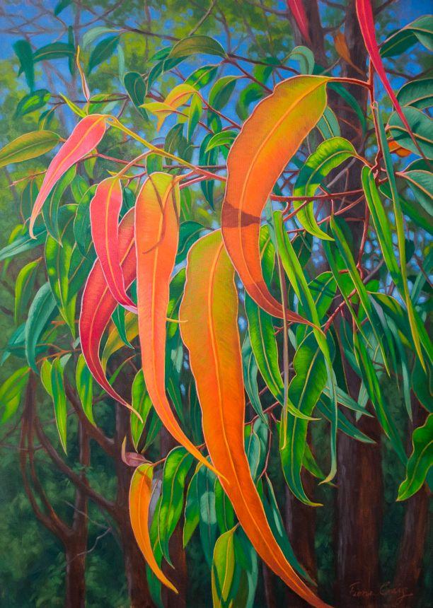 "Sunlit Gumleaves series - Sunlit Gumleaves, Fiona Craig, oils, 30"" x 42""."