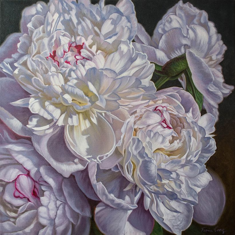 """'Peonies for Cara' - Oils on poly-cotton canvas, 24"""" x 24"""" / 61 x 61 cm.""""I cannot thank you (and my mum [for commissioning it]!) enough for my beautiful painting!! It is absolutely stunning, and I have hung it across from my bed so I see it first thing in the morning. Thank you so so much for it, it is something I will treasure forever, always remembering my 21st birthday."""" - Cara H. (florist)"""