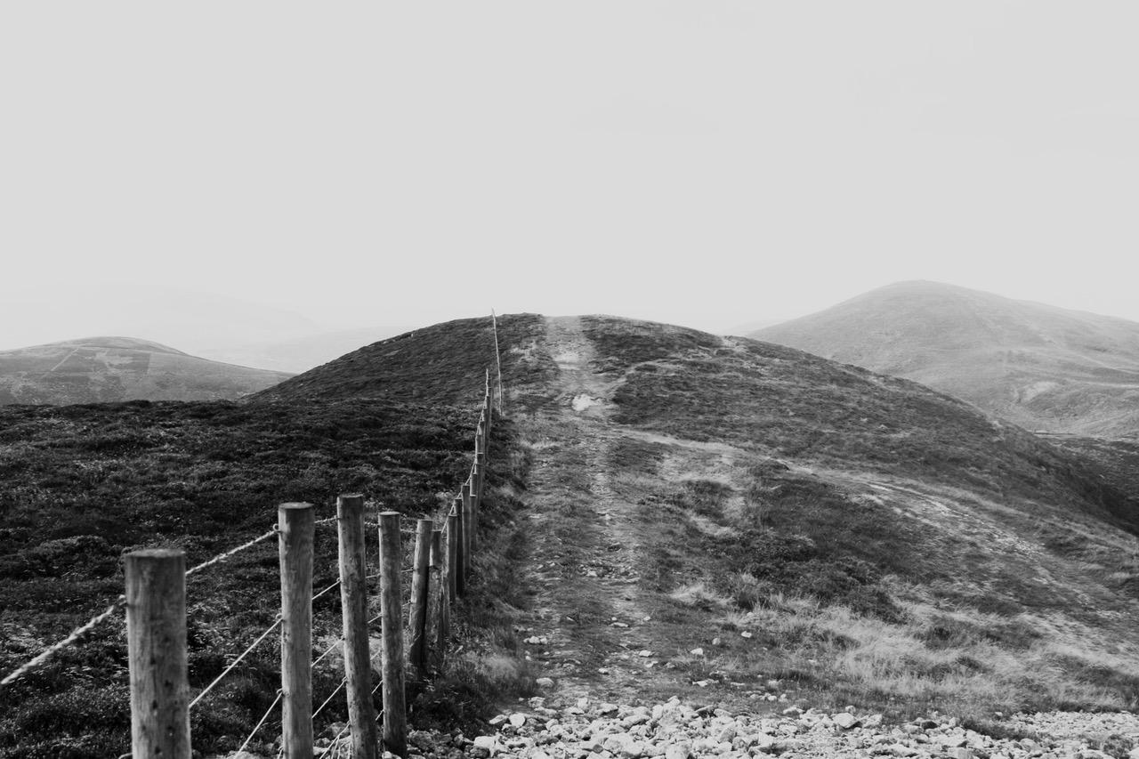 fence-border