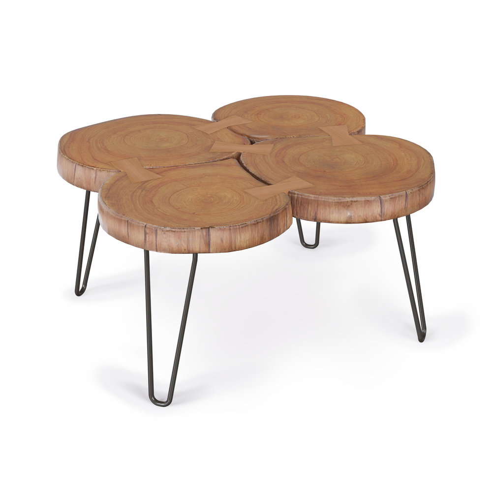Furniture Model, Raw Edge Coffee Table