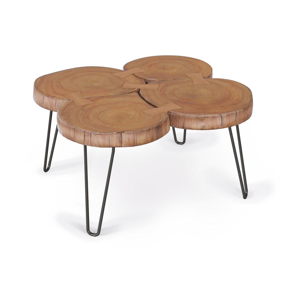 Furniture Model, Raw Edge Coffee Table