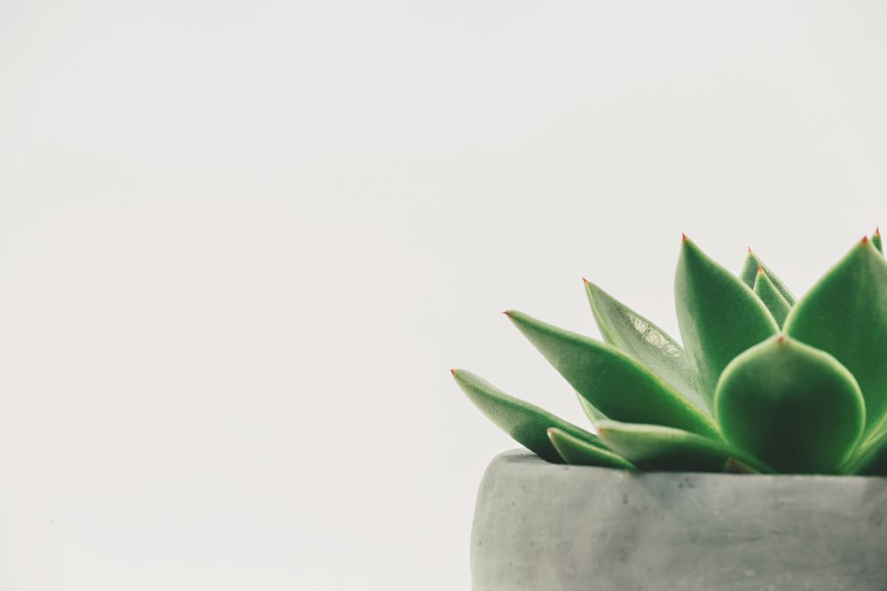 greenis simple. -