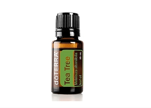 5. This miraculous multi-purpose essential oil - Even if you literally live under a rock, I'm sure you've heard of tea tree oil. This bottled miracle, otherwise known as Melaleuca, has more uses than I can count on one hand. In the great outdoors, it's useful for repelling bugs, healing wounds, and cleaning dirty surfaces. Bring along a bottle on your next camping excursion, or blend with water and put it in a spritzer bottle for convenience's sake. Either way, it'll make your #campinglife much easier.
