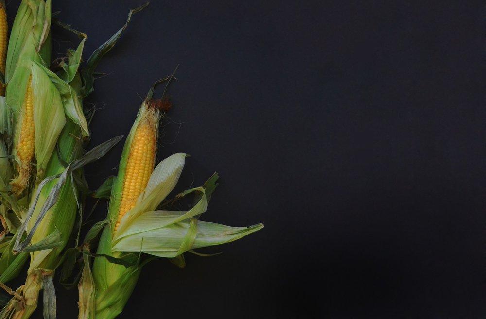 corn-1031202_1920.jpg