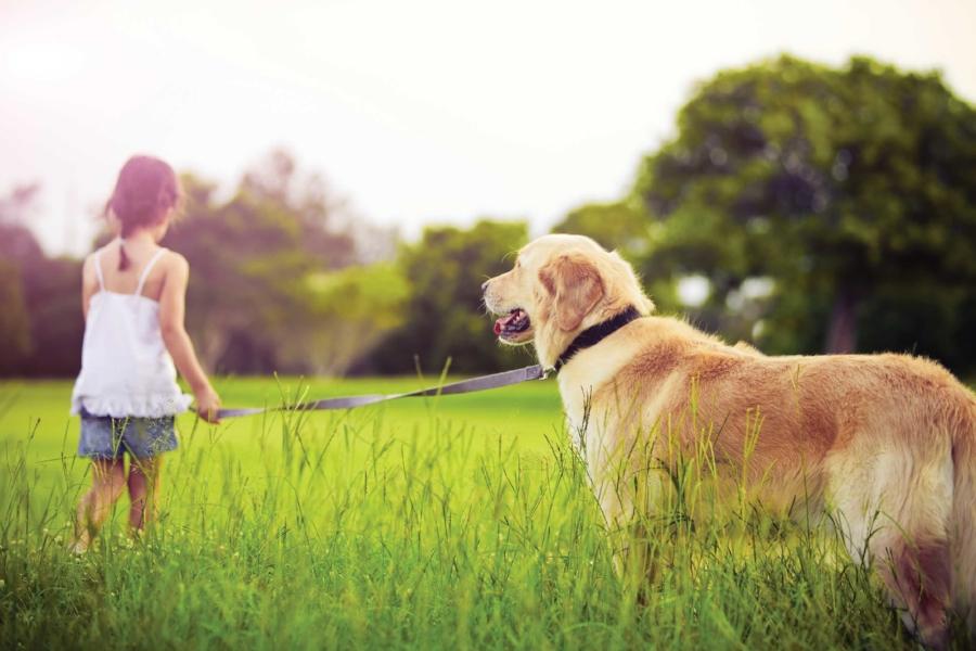 girl-and-dog2.jpg