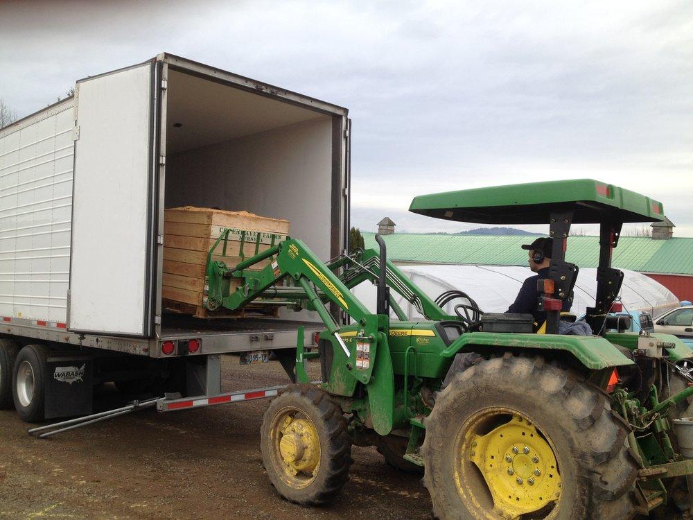 tractor loading bin.JPG