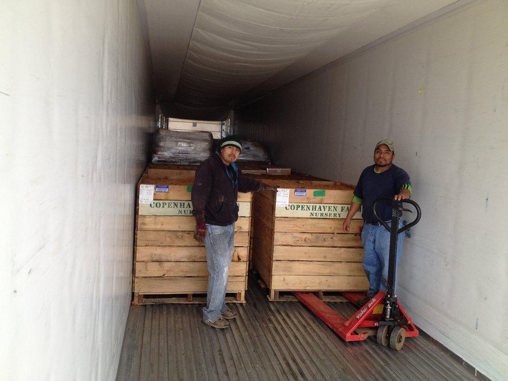 loaded truck.JPG