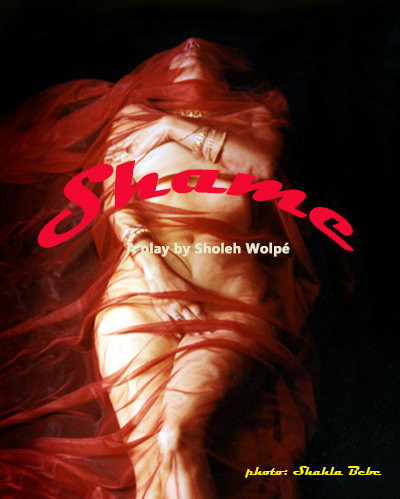 Shame, play by Sholeh Wolpe.theater, happiness at what cost.jpg