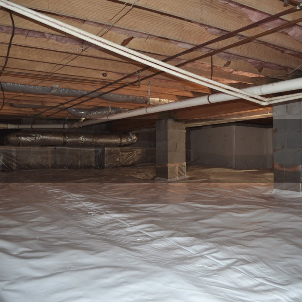 CRAWL SPACE -