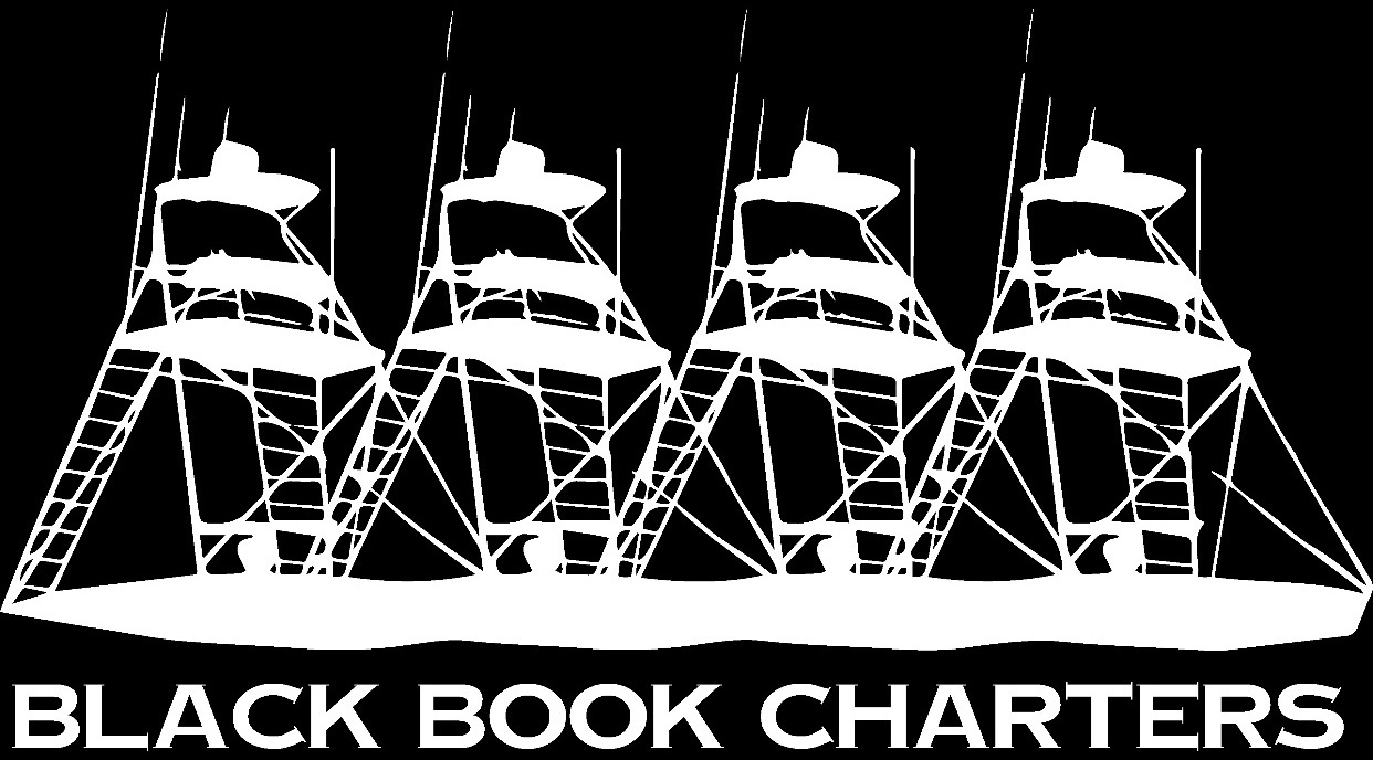 Private Sportfishing Charters