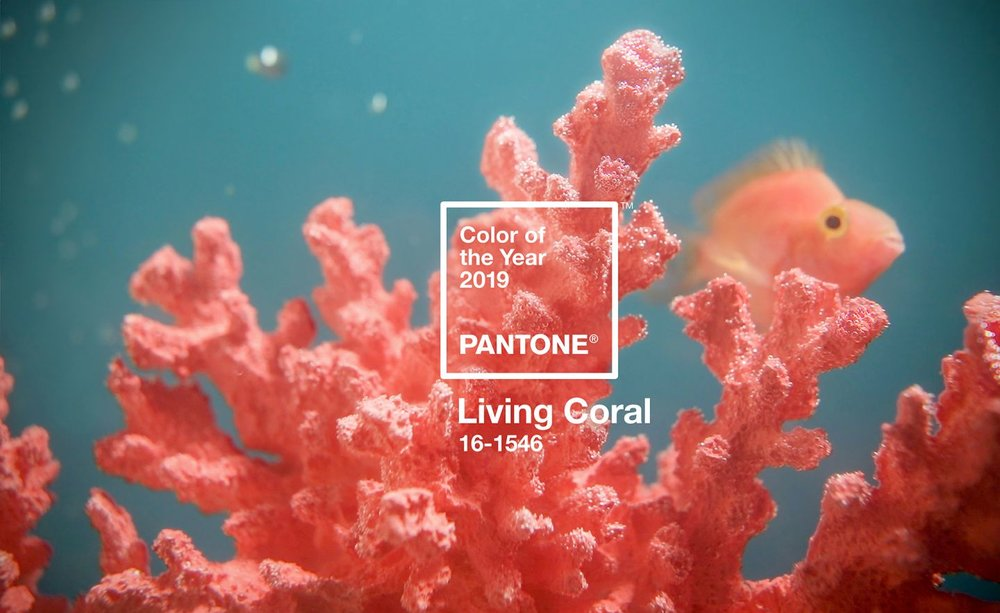 Image courtesy of Pantone Colour Institute.