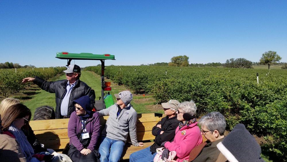 Touring the Red, White & Blues Farm in Williston, Florida