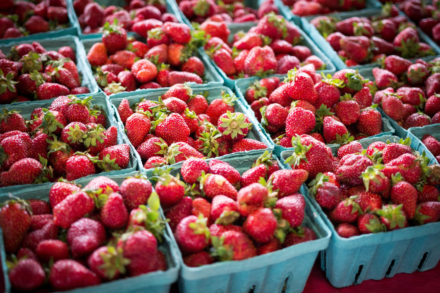 ad29b056051 Get berry excited for Strawberry Jubilee — Nashville Farmers Market