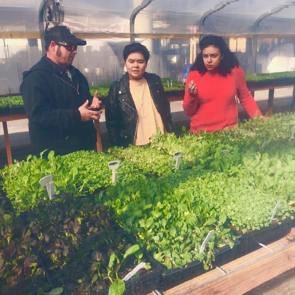 """I enjoy getting to meet new people every week who share common interests in how food is grown, while at the same time introducing our products to people who have no idea about microgreens."""
