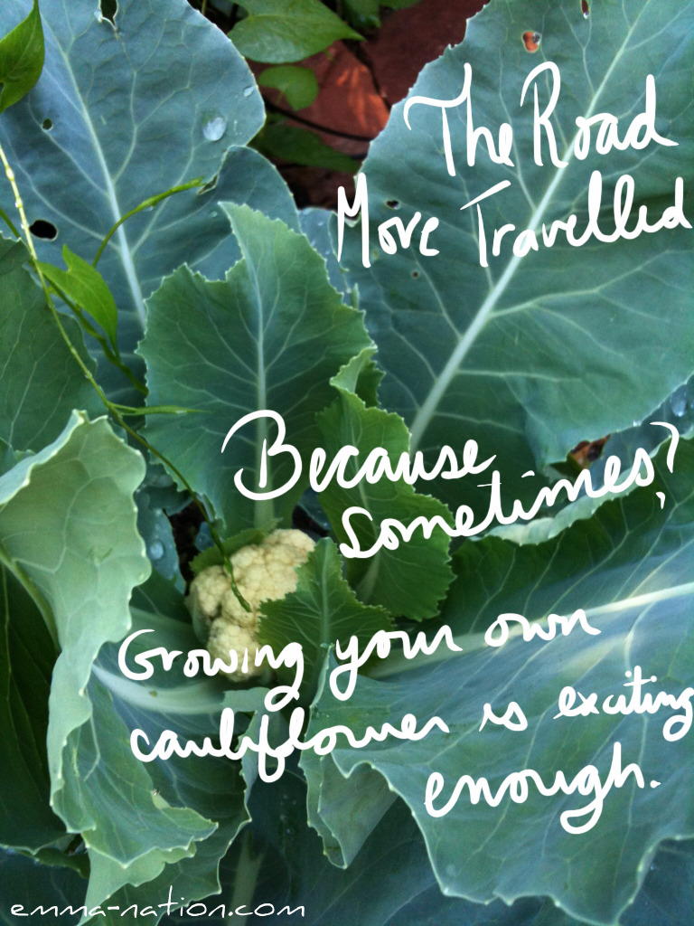 The Road More Travelled: Because sometimes? Growing your own cauliflower is exciting enough.