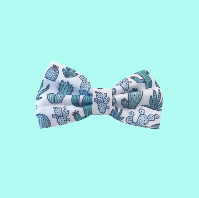 bows + ties -