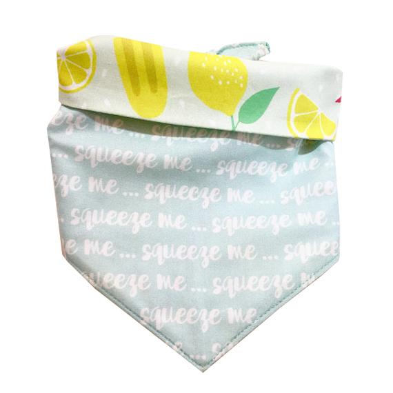 lemon squeeze flat.jpg