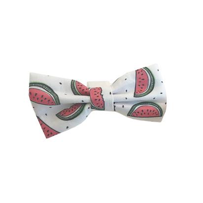 watermelon bow.jpg