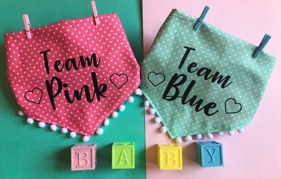 TEAM PINK TEAM BLUE.jpg