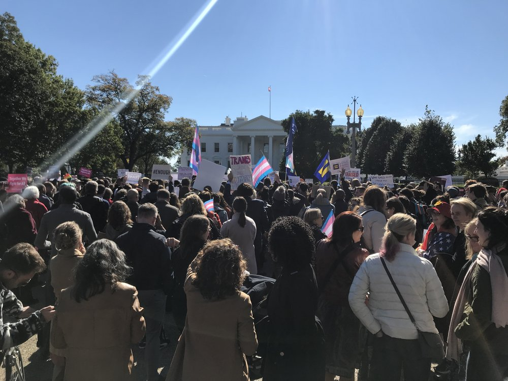 ACTION OF THE MONTH: - On Sunday, the NY Times reported that the Trump administration plans to radically redefine gender, eliminating federal recognition of 1.4 million trans Americans including 20,900 trans Louisianans. Sign your name to our petition to stand with your trans friends, family, and neighbors.
