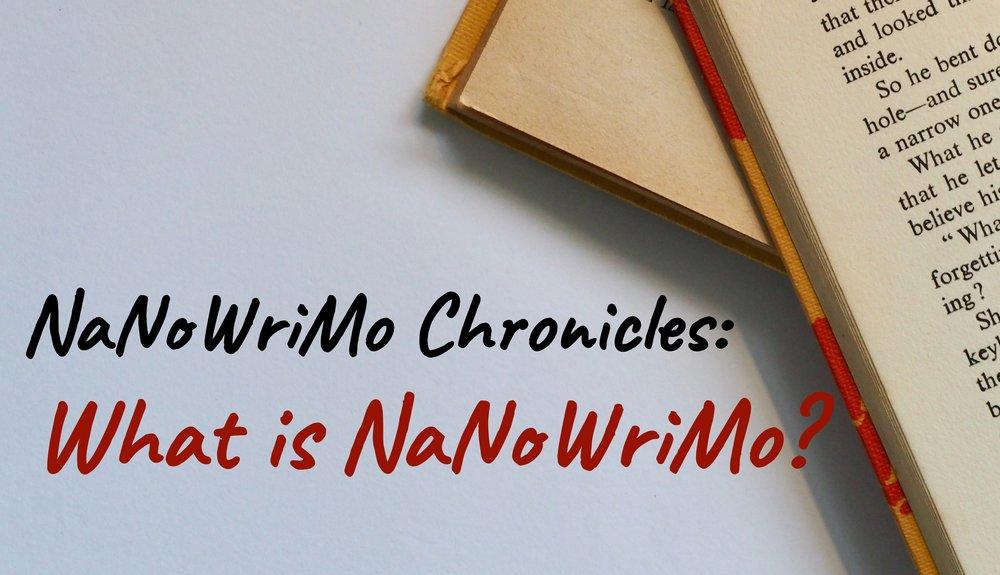 What is NaNo (1).jpg