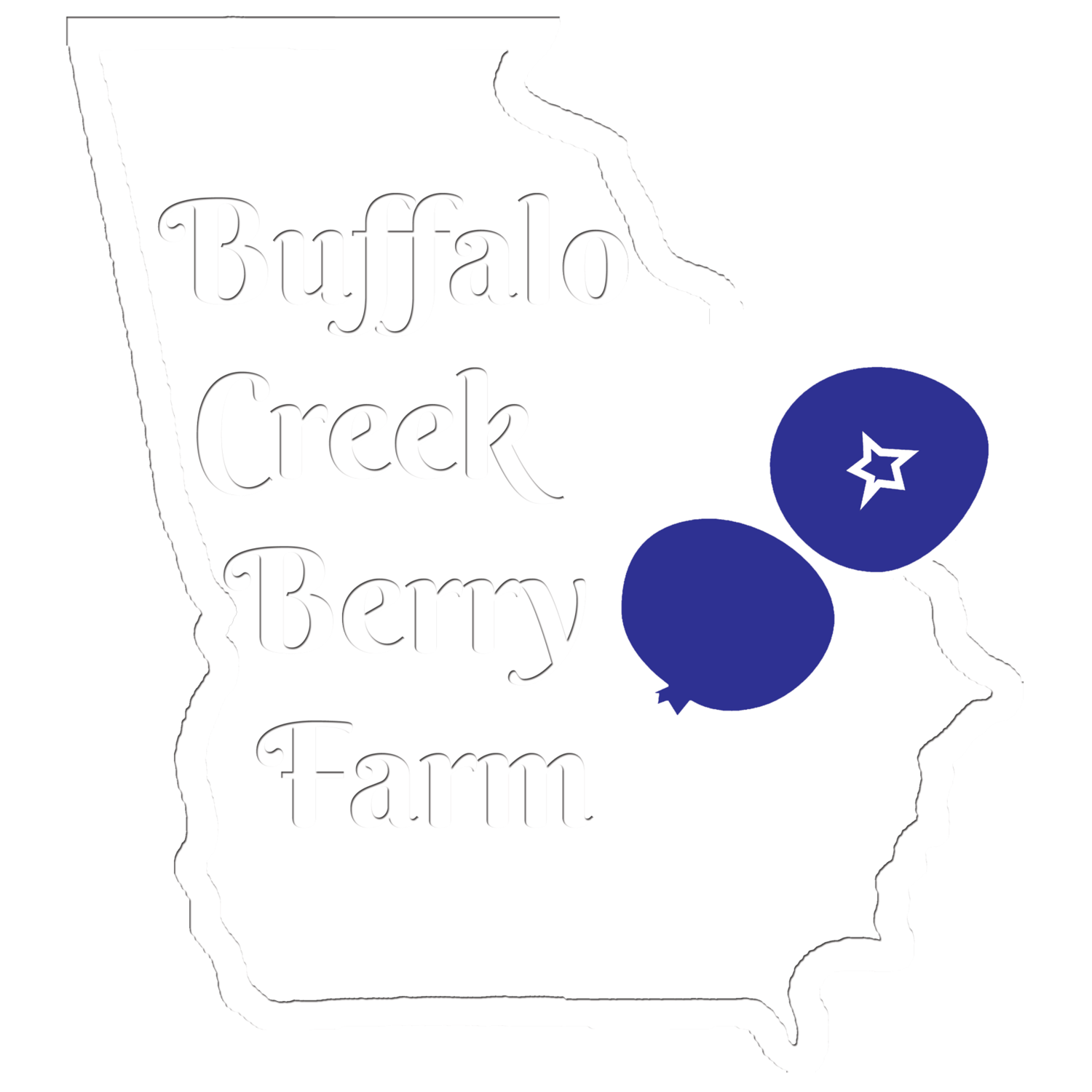 Buffalo Creek Berry Farm GA
