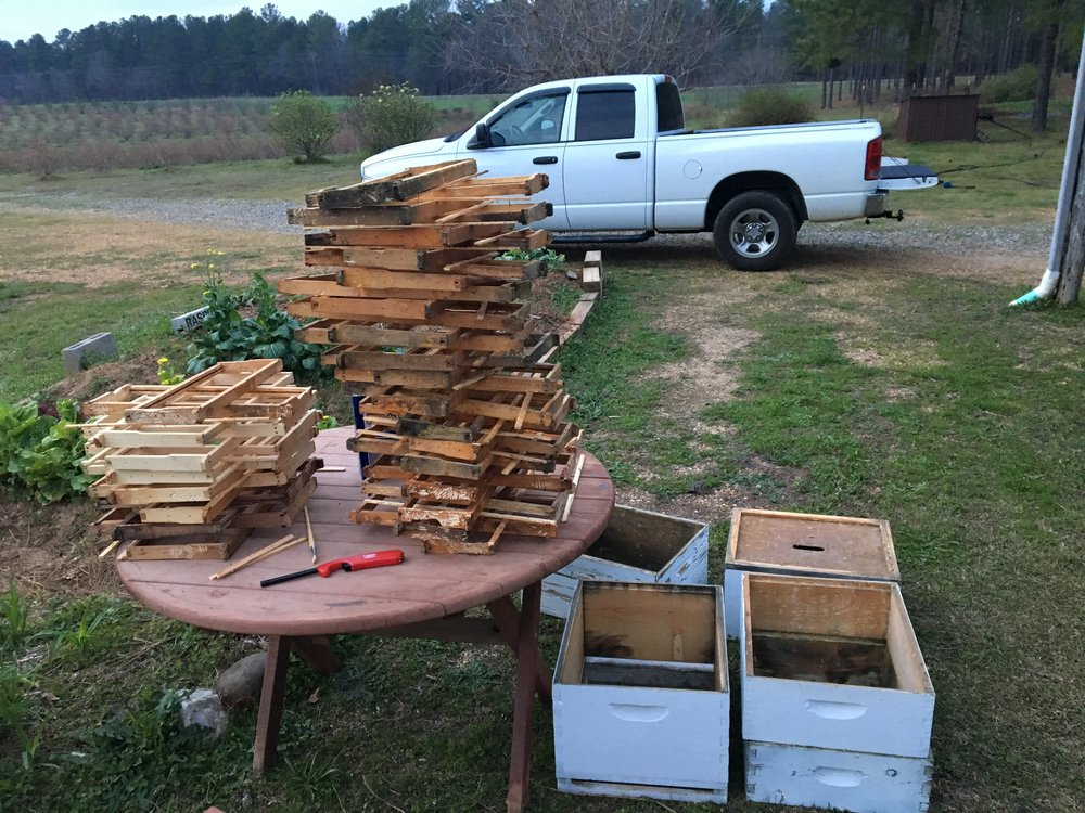 cleaning beehives