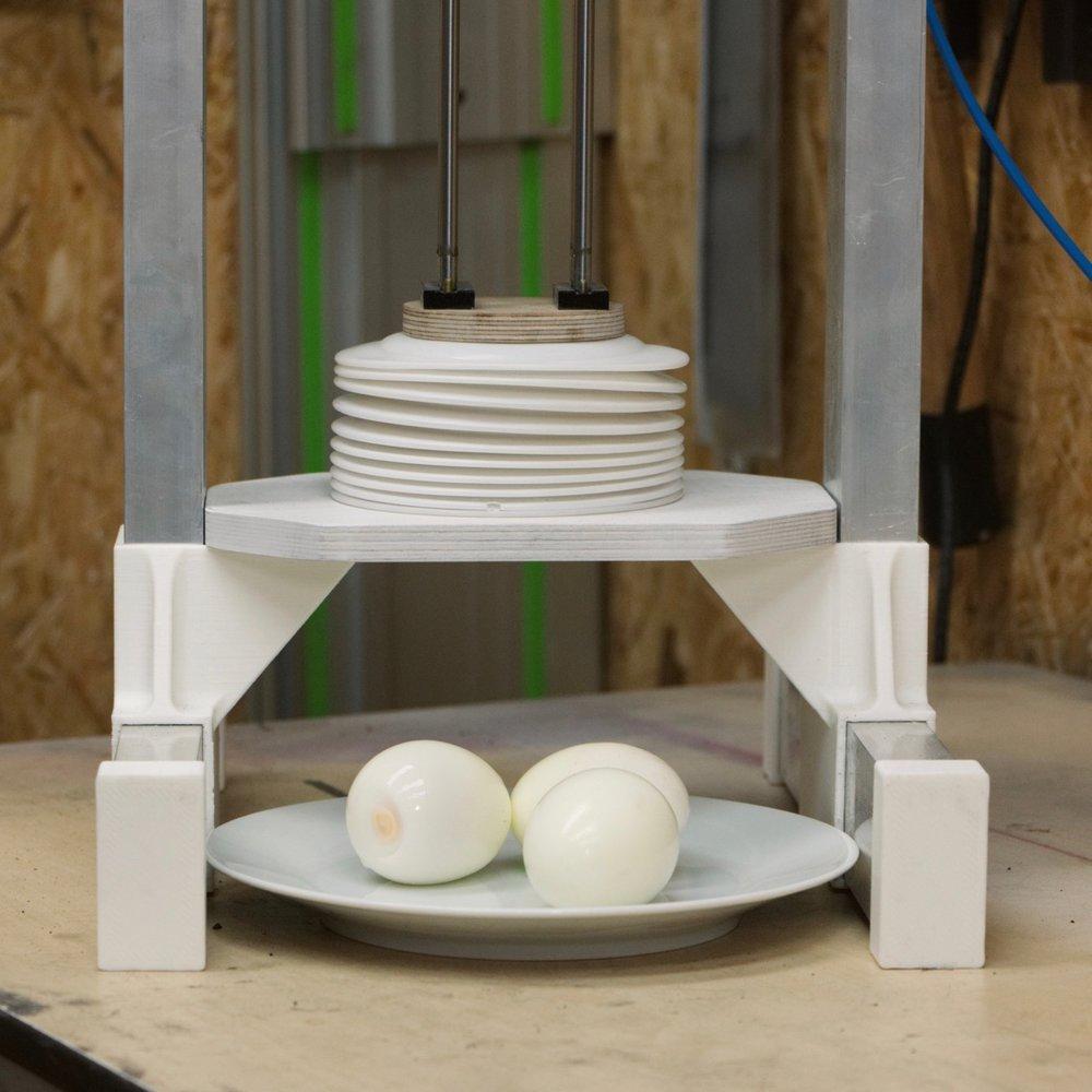 Egg peeler with eggs