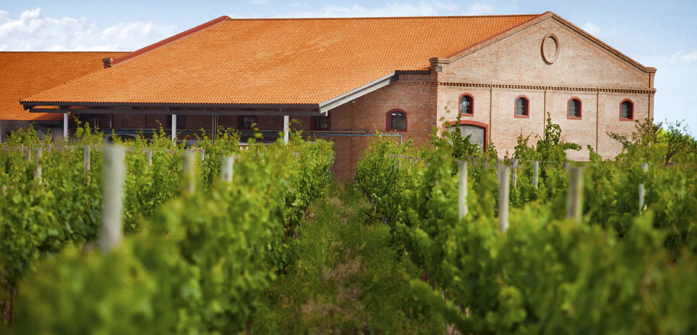 "Primera Zona - The areas of Lujan de Cuyo and Maipù, are generally regarded as the original sites where Mendoza viticulture first developed in past centuries. For this reason the area is called ""Primera Zona"" (First Land). In this area ALh has his original vineyards, and all of the Malbec Clasico grapes are sourced here. We can say that Primera Zona represents the legacy of Malbec tradition."