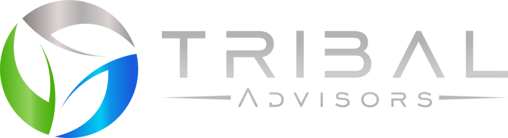 Tribal Advisors Logo Color Shade.png