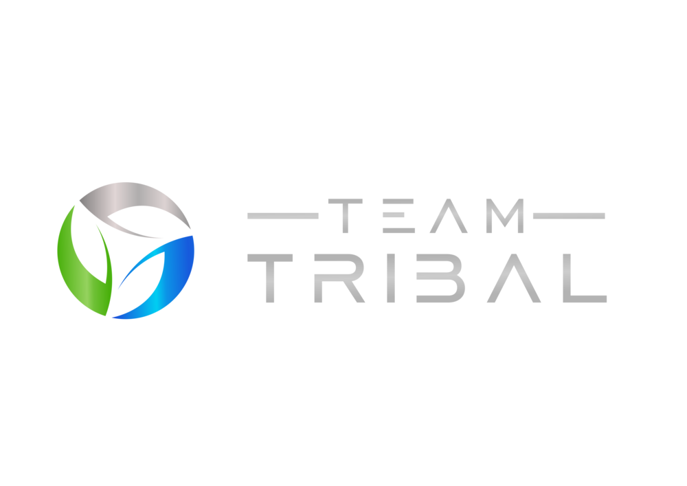 Team Tribal Logo Color Shade.png