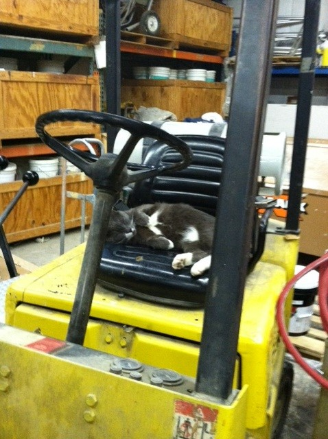 Learning to drive the forklift..sort of.