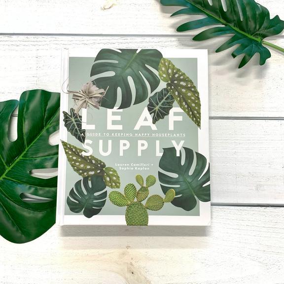 https://shop.designroots.com/products/leaf-supply-by-lauren-camilleri-sophia-kaplan