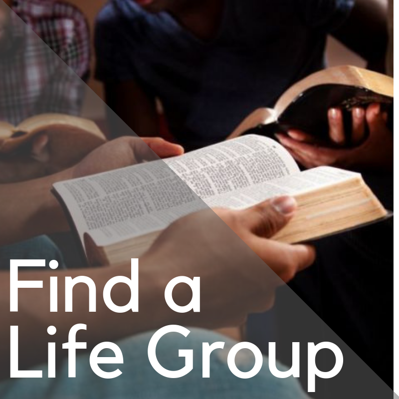 Find A Life Group
