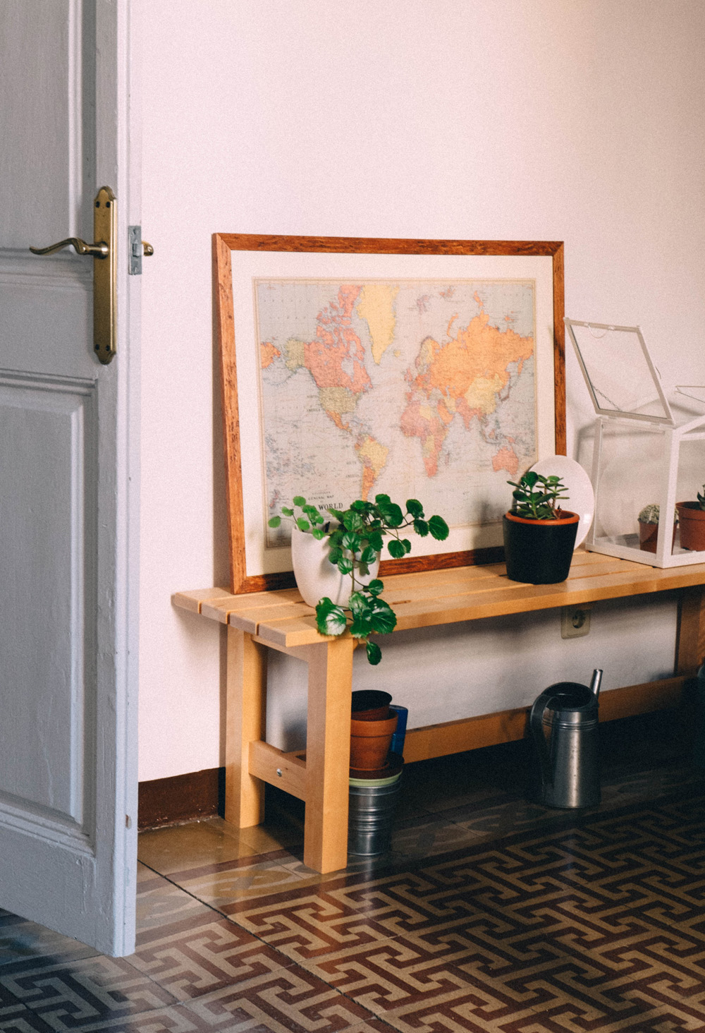 plants_at_home_small.jpg