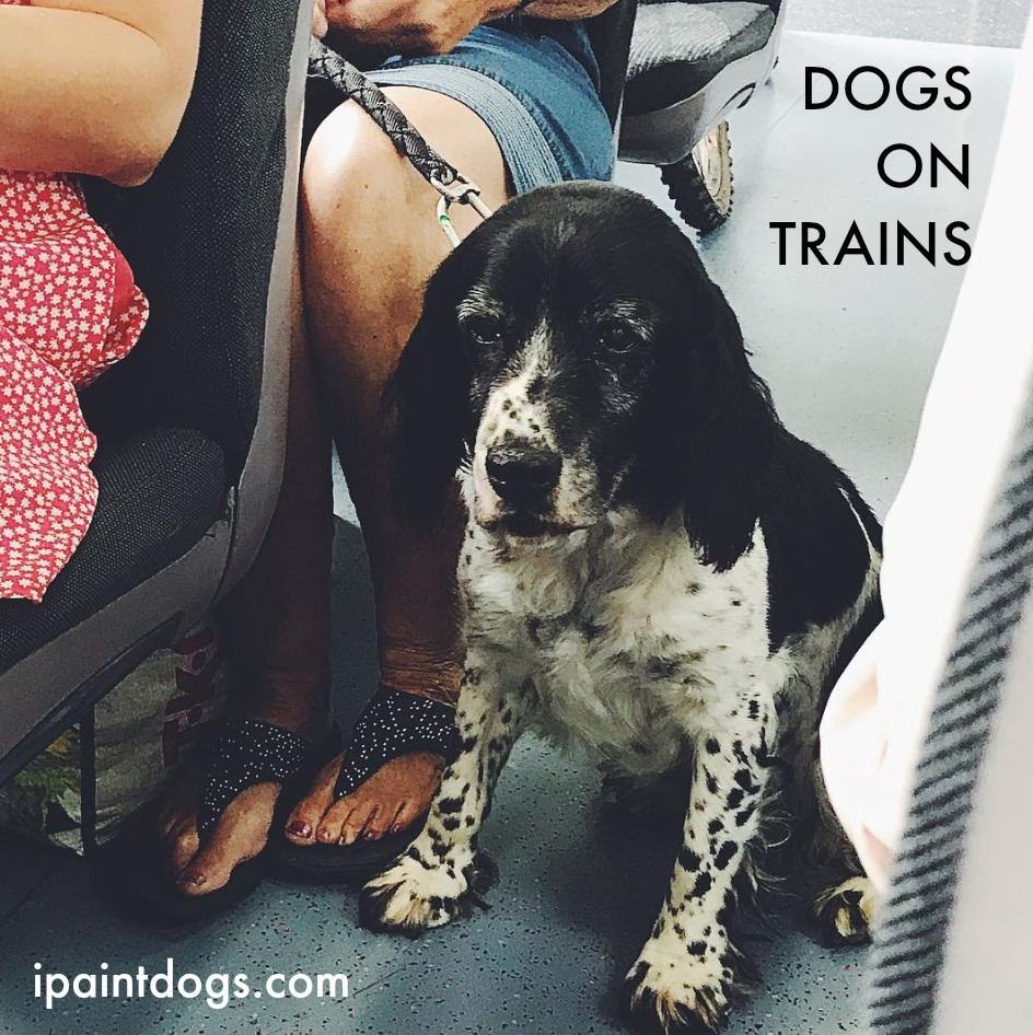 Dogs on Trains, Samantha Barnes is ipaintdogs.com