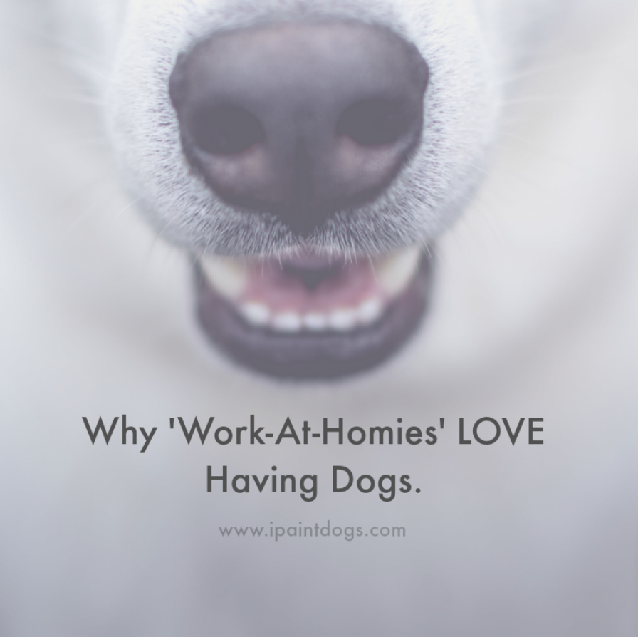 Do you work from home?  Dog's help.  Blog Post by Samantha Barnes Artist & ipaintdogs.com