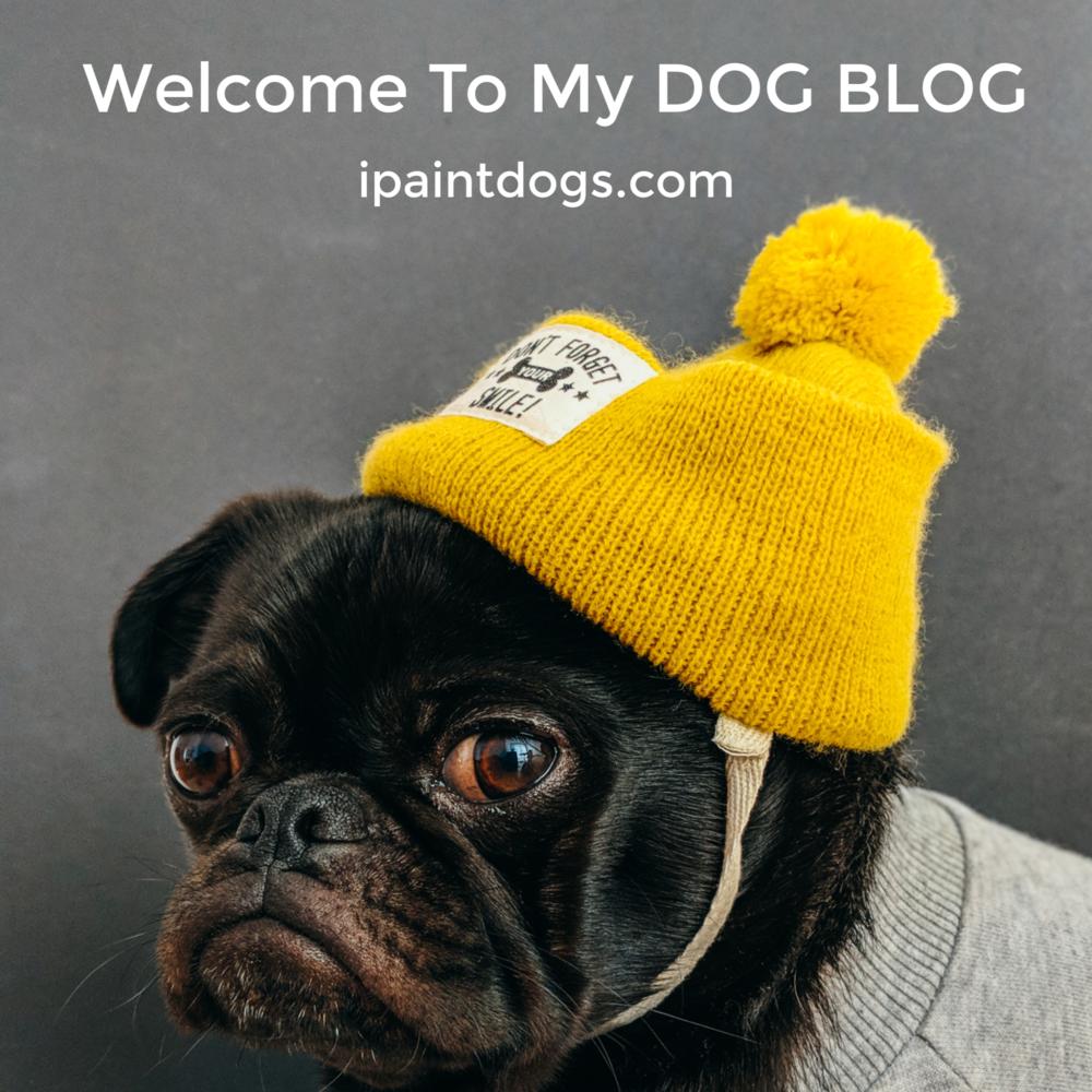 Dog Blog by Samantha Barnes, ipaintdogs.com
