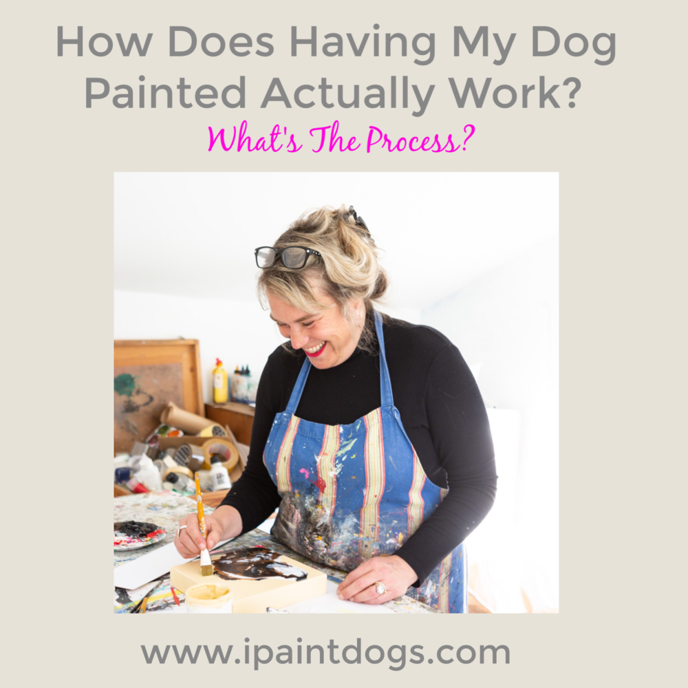 How does having my dog painted actually Work?  What's the process?  ipaintdogs.com