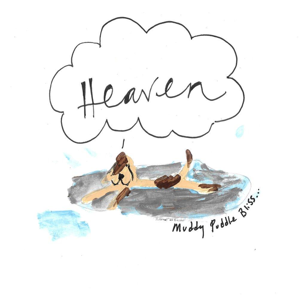 Muddy Puddle Heaven, Dog Cartoon by ipaintdogs.com