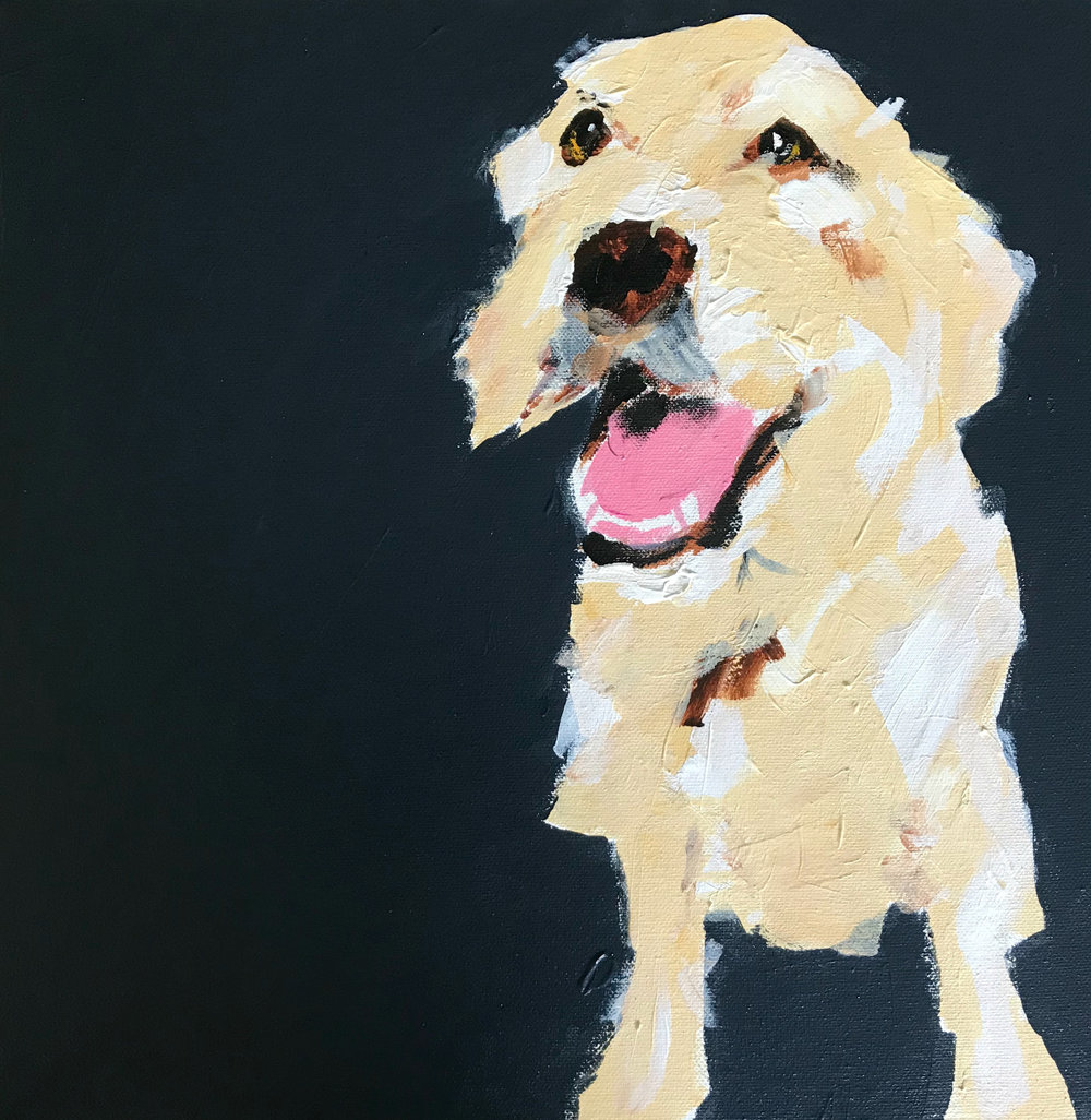 Labradoodle Painting by Samantha Barnes, ipaintdogs