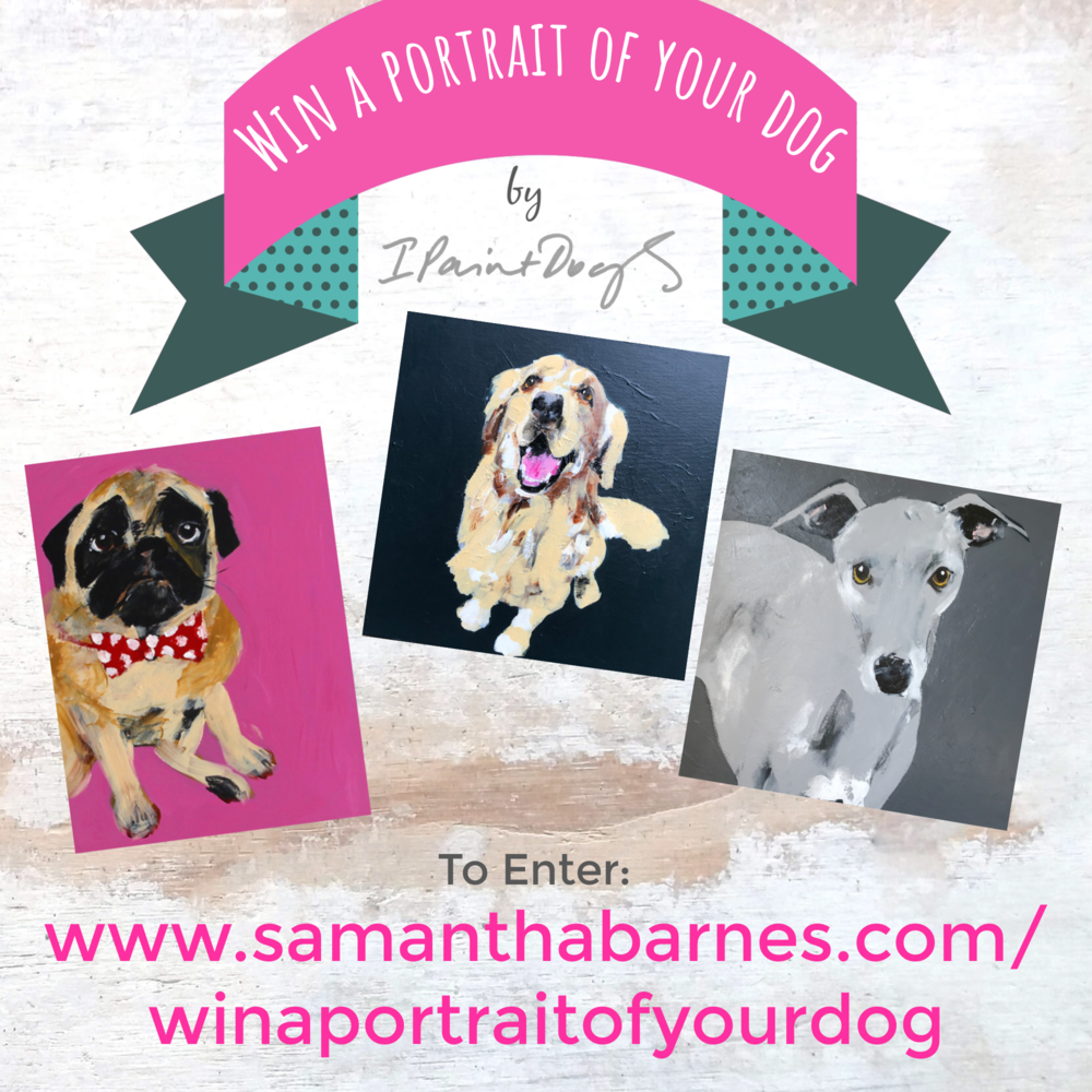 Competition to win a portrait of your dog, Samantha Barnes is ipaintdogs.com