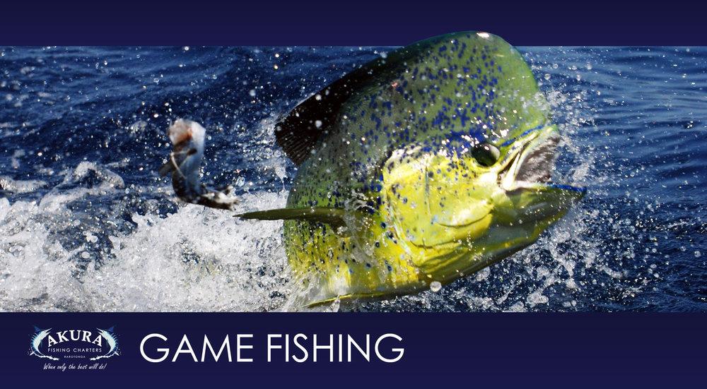 2. Game Fishing.jpg
