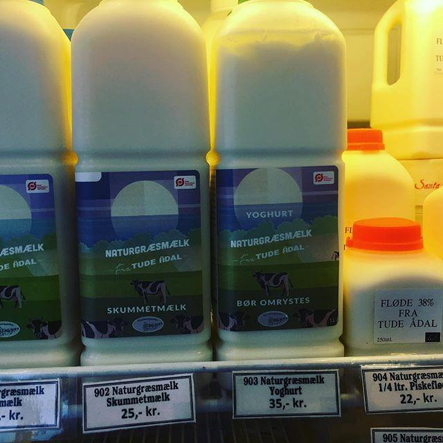 Ægte græsmælk og fløde #tilbagetilstart