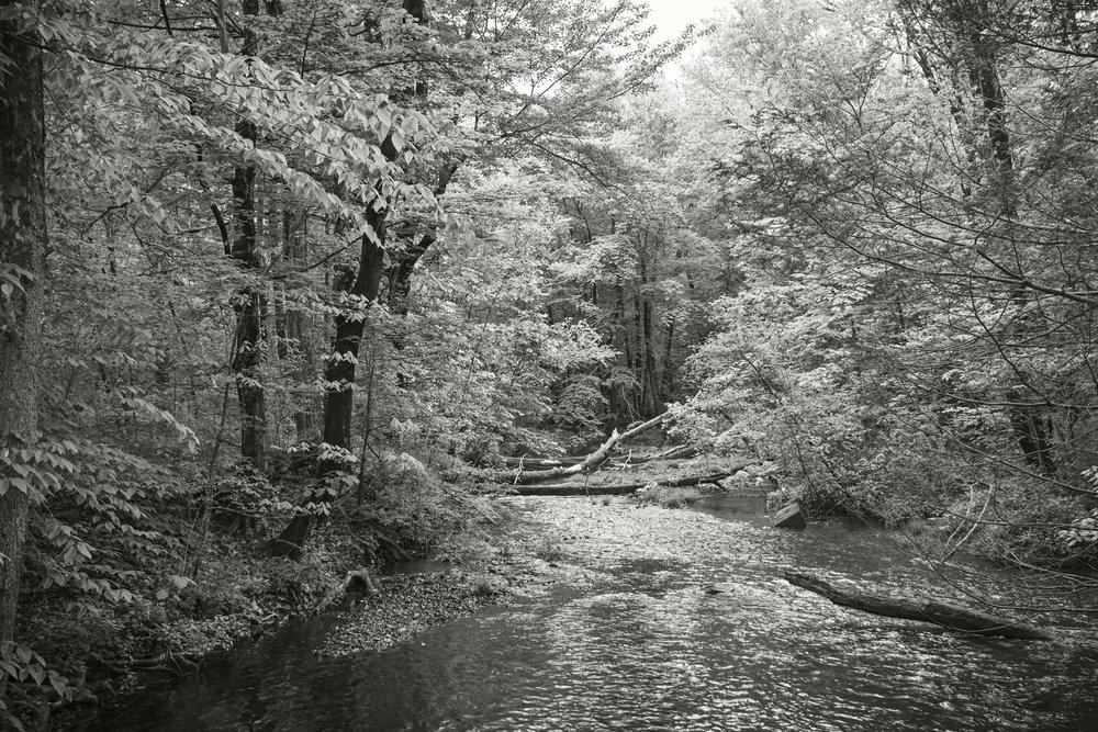 mill river.jpg