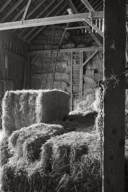 gehrt-farm-02_39344072432_o.jpg
