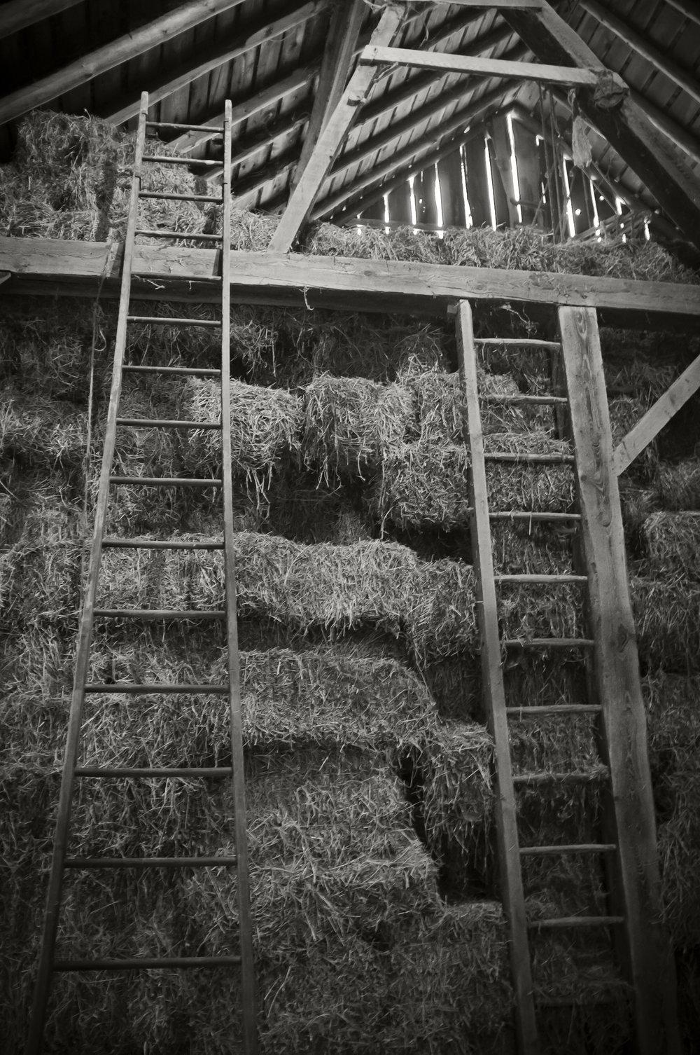 hayloft-ladders_8339296815_o.jpg