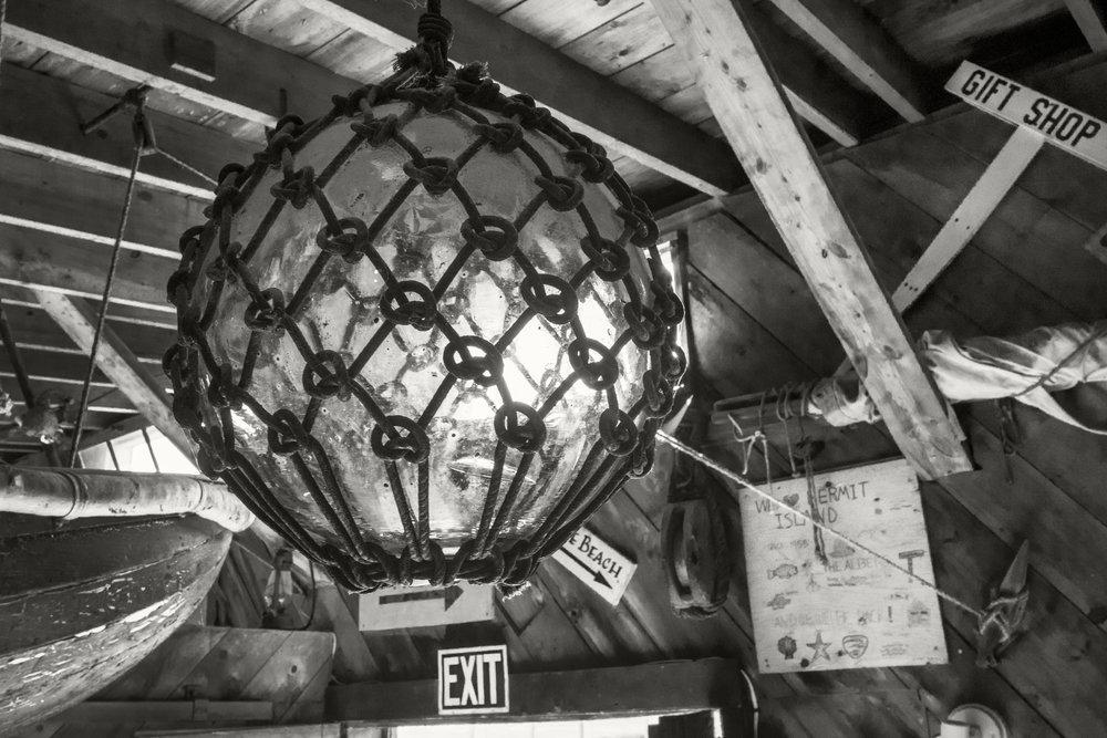 Kelp Shed Ceiling.jpg